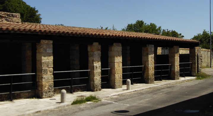 Palmenti e Vano del Torchio - Foto #2474