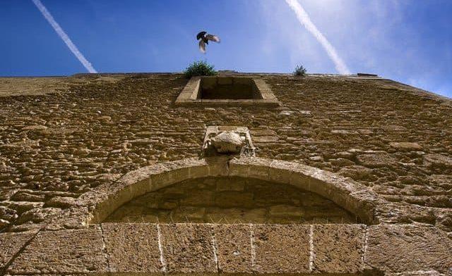 Ex Convento di Santa Chiara - Foto #2362