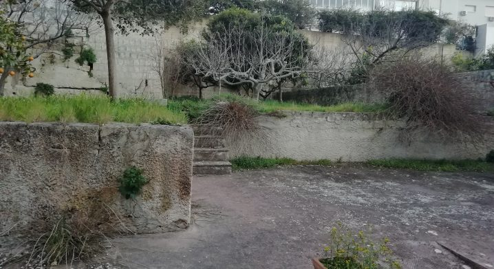 Centro Polivalente di Faggiano - Foto #2979