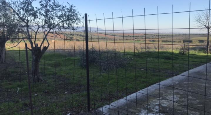 Località Madonna di Belmonte - Foto #4291