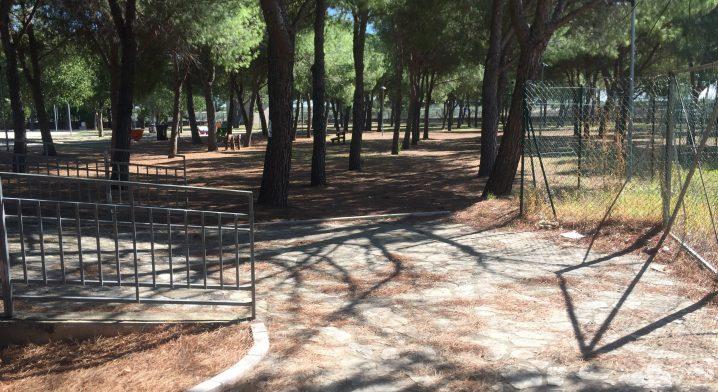 Anfiteatro Comunale di Stornarella - Foto #5450